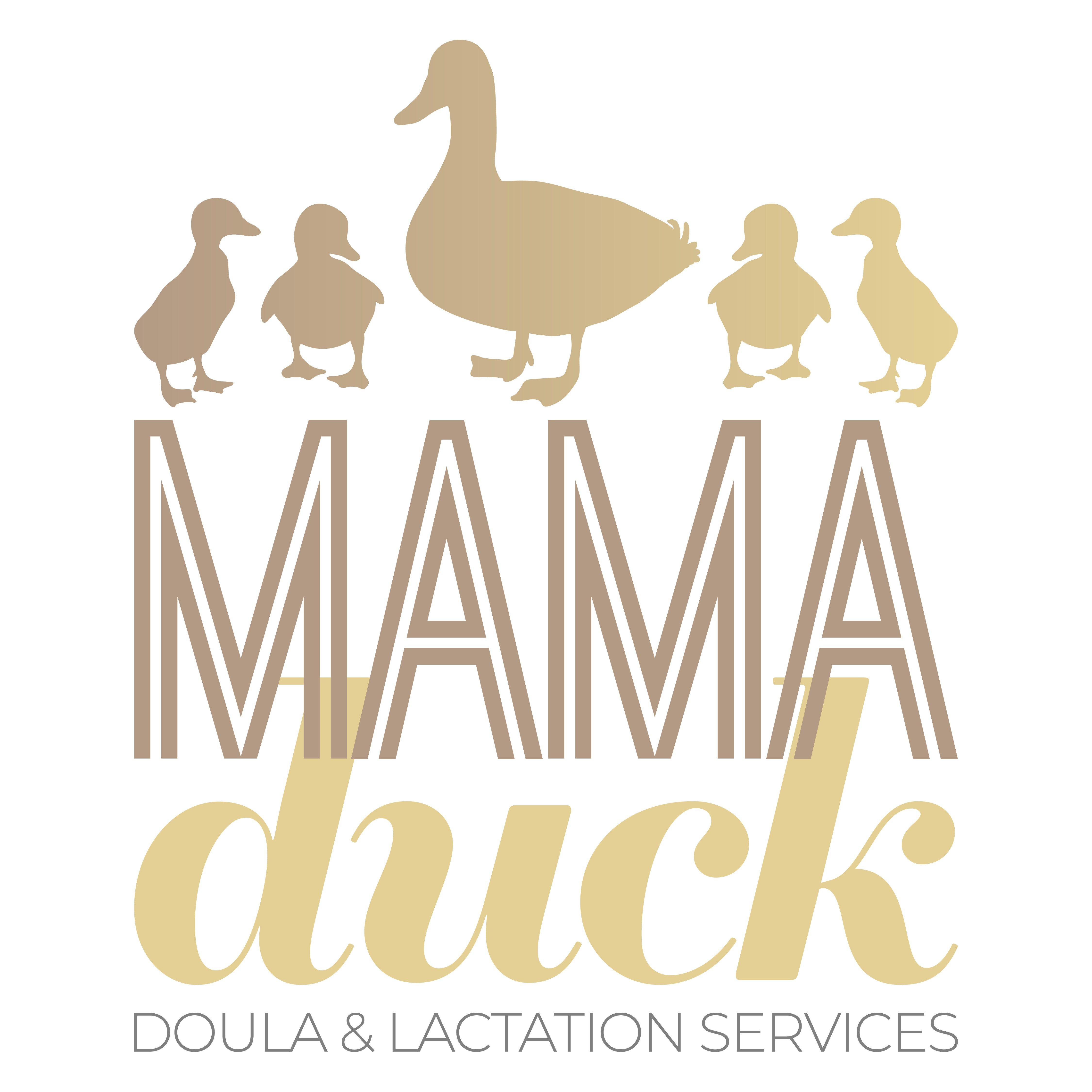 Minnesota Doula, Lactation Consultant, and Car Seat Technician